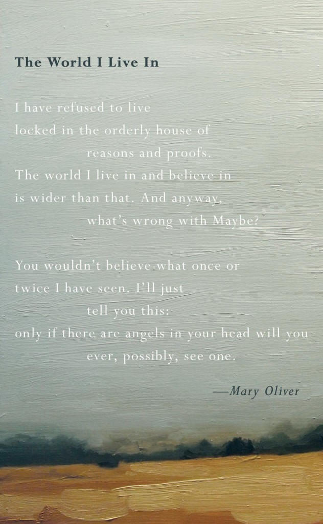 mary oliver building the house essay To order an essay paper, customers (after signing up) should place an order by filling in a form they are usually asked to provide information about the type of work, subject, e-mail, deadline, etc, and start an account.